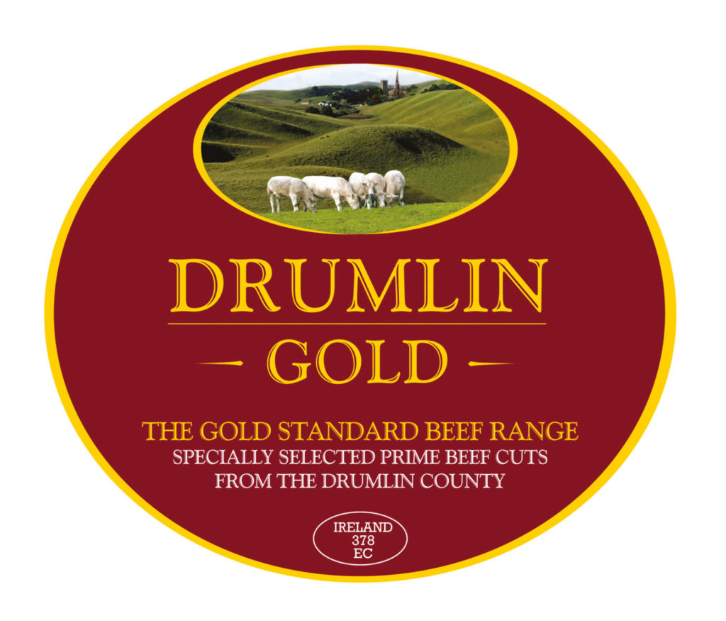 drumlin-logo-1-1024x875